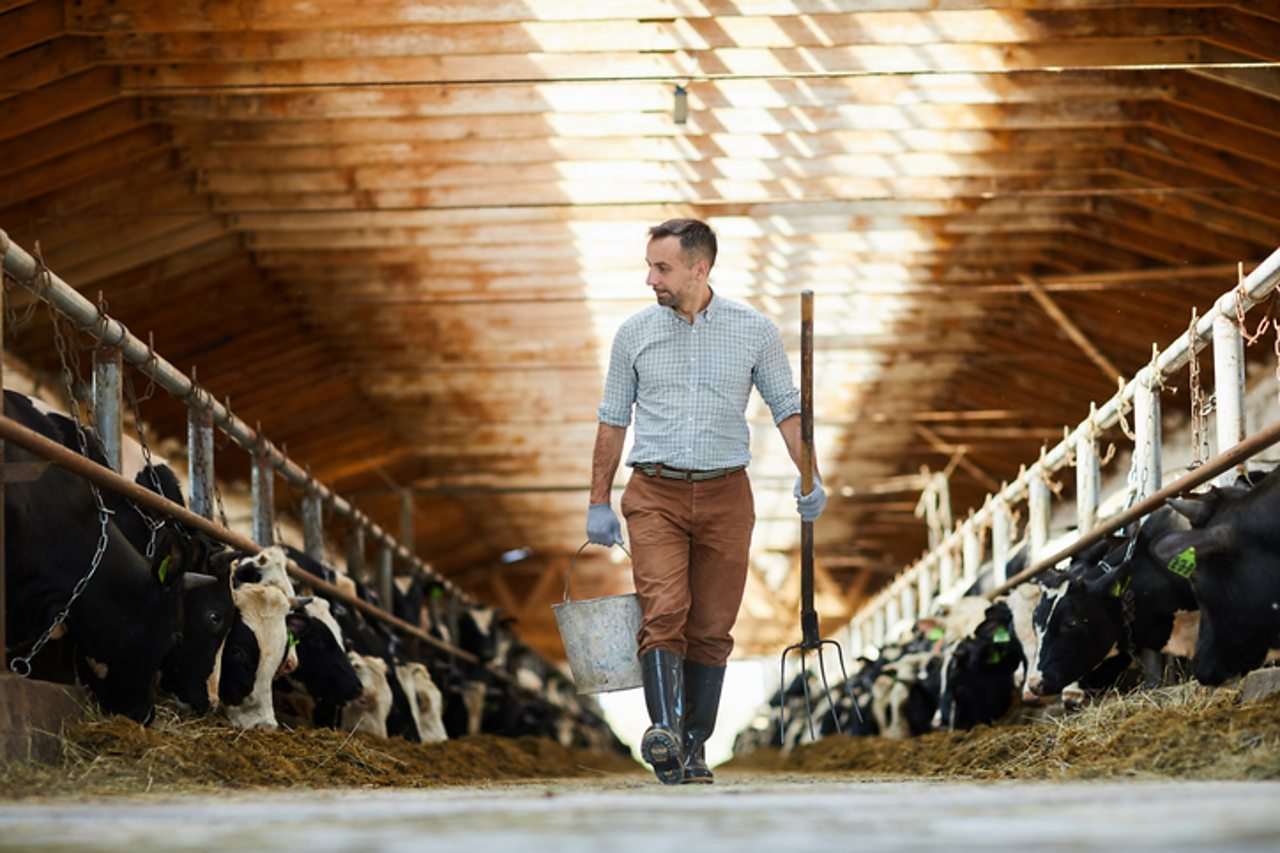 Top farming podcaster to feature on Armstrong Watson's…