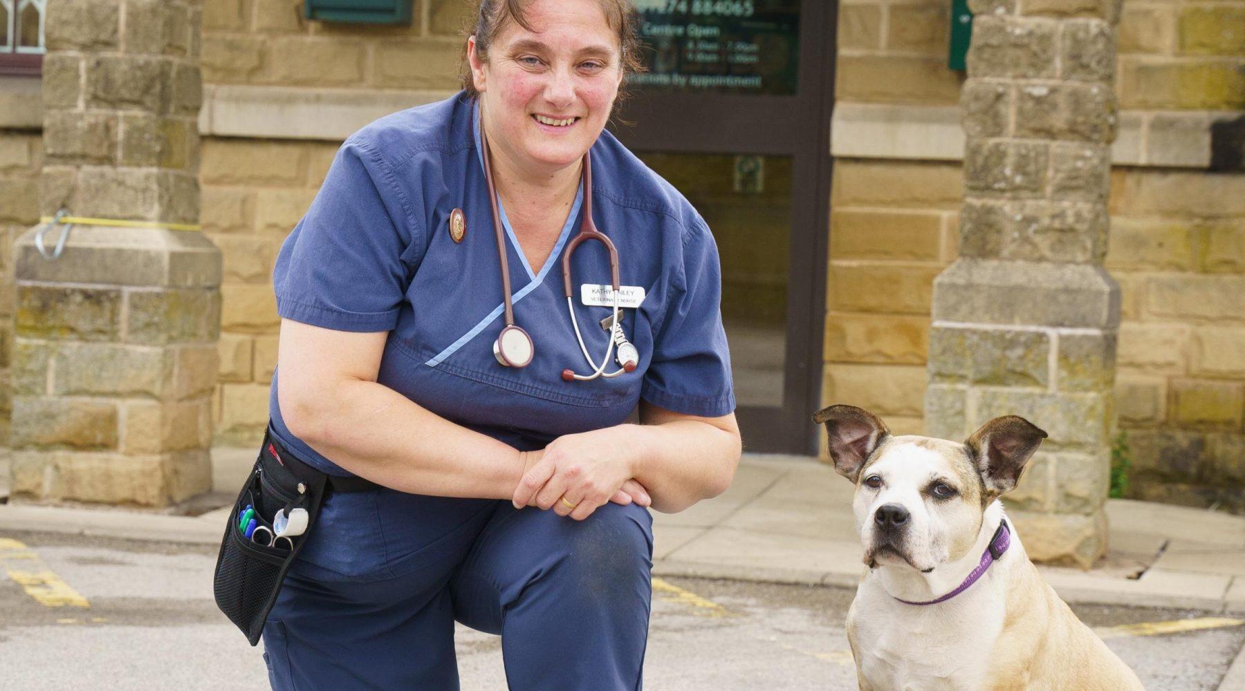 New head veterinary nurse steps up amid Covid…