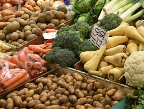 Academic advises Council to start food business
